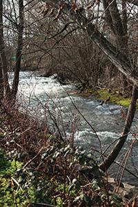 berge de rivière