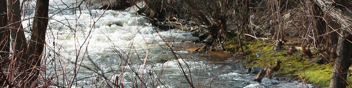 riviere sava1200X300